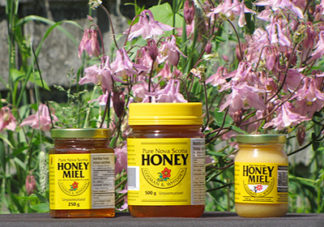 Unpasteurized Nova Scotia Honey