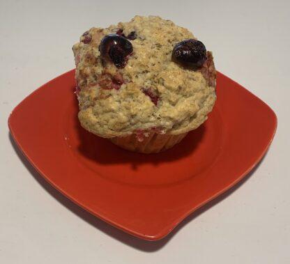 Vegan Oatmeal Cranberry Muffin